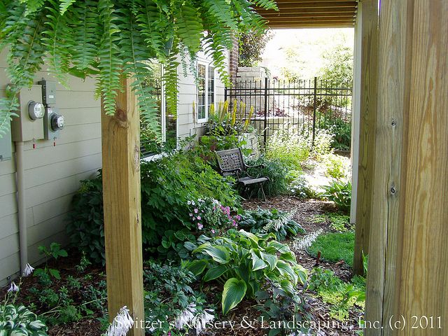 I want to plant a shade garden under the deck stairs