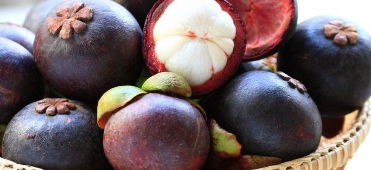 Saiba mais sobre Mangostim, a fruta considerada uma das mais saborosas do mundo