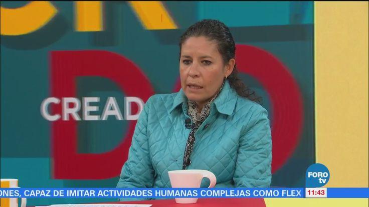 Diana Pérez, de la Facultad de Veterinaria de la UNAM, habla del cuidado de las mascotas