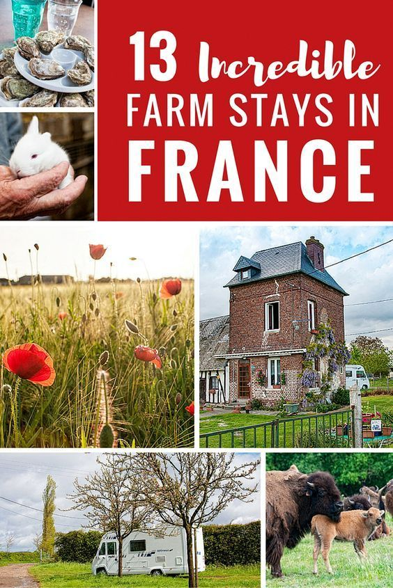 We spent the night on farms producing everything from bison to wine throughout France with the France Passion program for motorhomes. Last summer one of the highlights of our 3-month motorhome tour of France was camping overnight on local farms. While it isn't possible to just pull into a farmer's field and set up camp, there is an organisation called France Passion that makes it almost that simple.