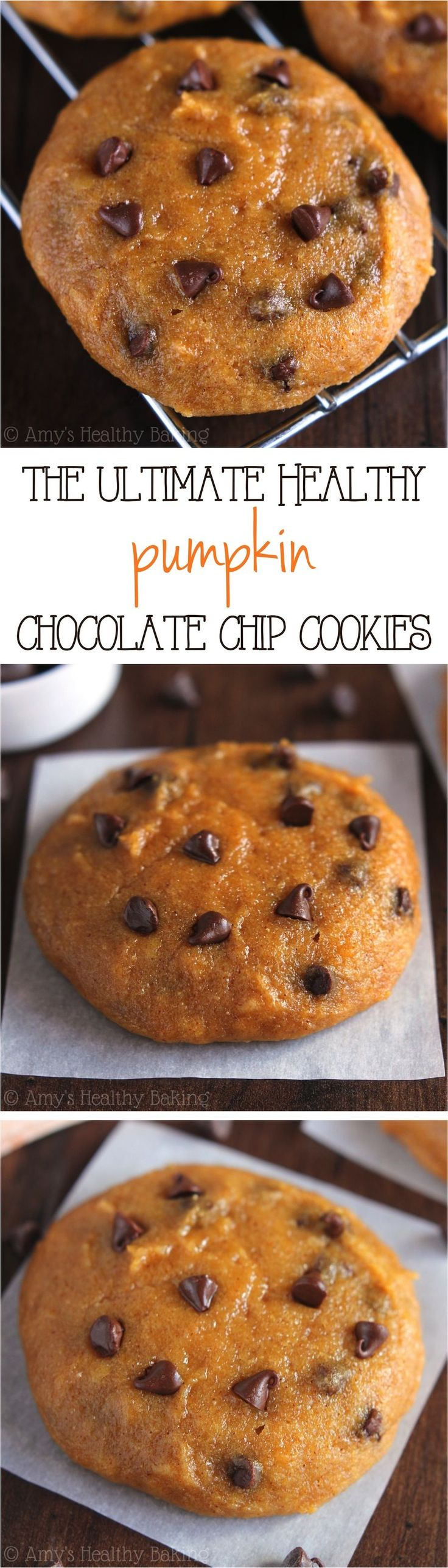 The ULTIMATE Soft & Chewy Pumpkin Chocolate Chip Cookies