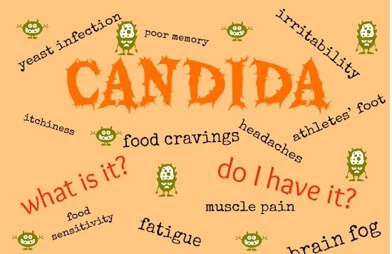 17 Best Images About Candida Albicans On Pinterest Skin