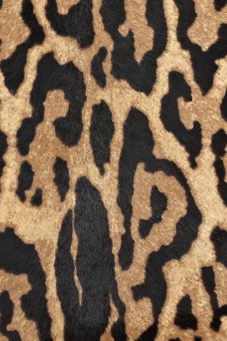 Leopard print hair on calf