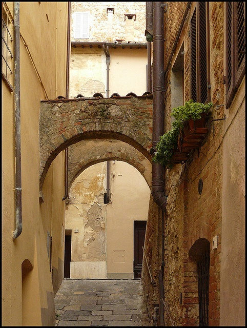 Montepulciano vicoliy - our home away from home
