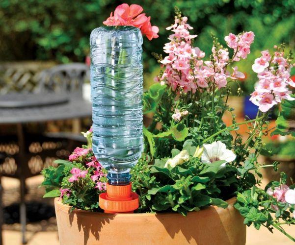 Les 25 meilleures id es concernant plantes en plein soleil for Plantes jardiniere plein soleil