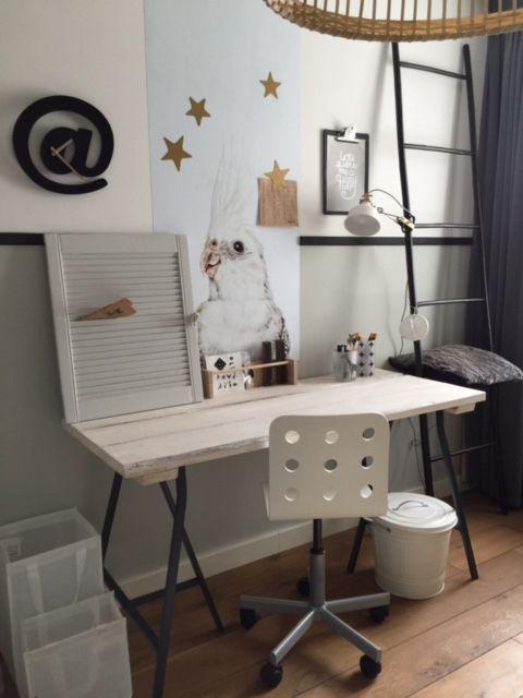 Het magneetbehang met valkparkiet bij Evelien. Mooi bureau hoekje.