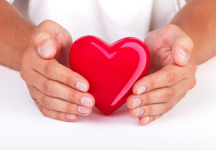 Herbal Support for Cardiovascular Health