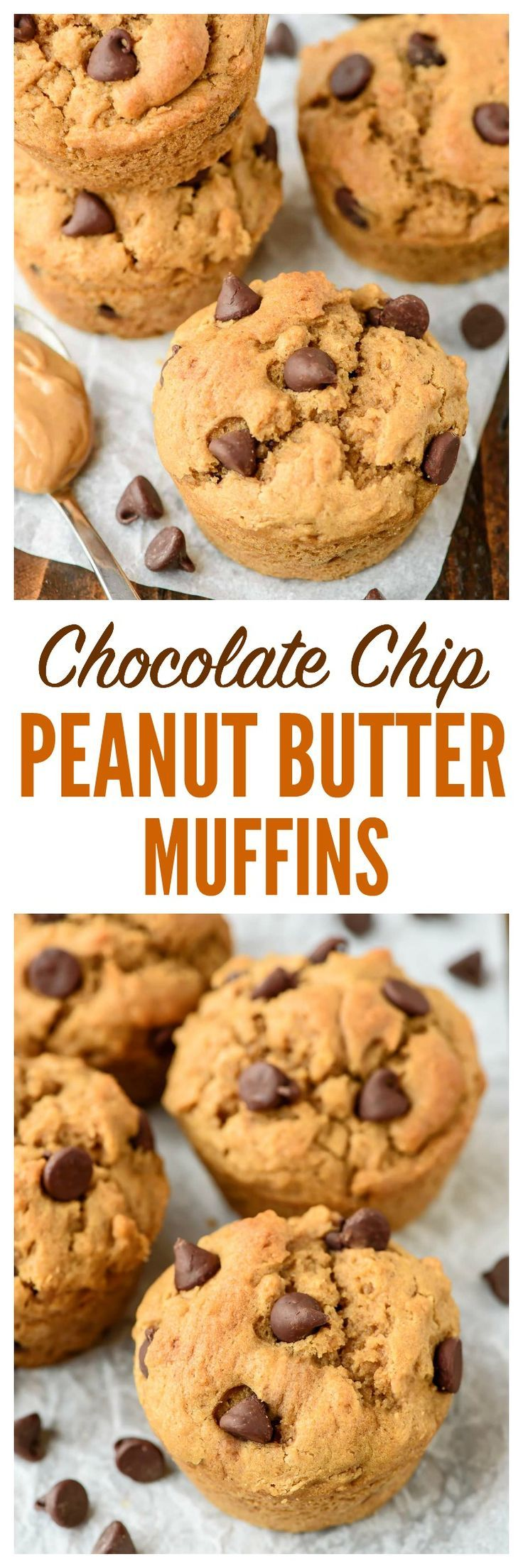 Moist and fluffy Peanut Butter Muffins with Chocolate Chips. Whole wheat with 7+ grams of protein, these make a filling, healthy breakfast or after school snack! www.wellplated.com