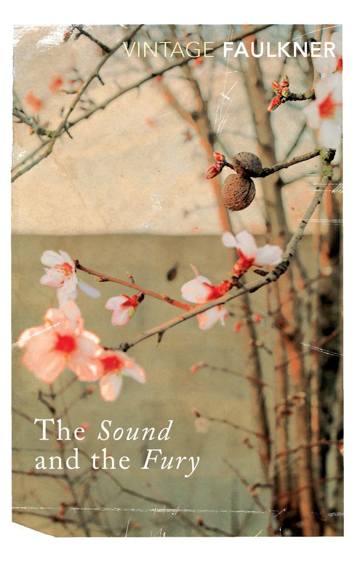 an overview of the sound and the fury by william faulkner The sound and the fury, william faulkner the sound and the fury is a novel written by the american author william faulkner it employs a number of narrative styles, including stream of consciousness.