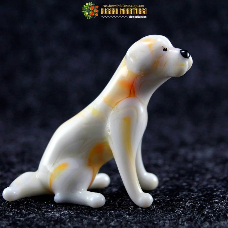 Color Glass Labrador Figurine Figurine.  Check out here: https://goo.gl/JrXahz Dogs collection: https://goo.gl/RByga4  #white  #lab  #puppy  #dogsofinstgram  #new  #doglove  #mylove  #labrador  #labradorretriever  #labs_of_insta  #puppyoftheday #puppies  #instalike  #instadaily  #instadog  #labsofinsta #dog  #ilovemydog  #labstagram  #russianminiatures  #talesofalab  #adventurewithdogs  #dogsofinsta  #campingwithdogs