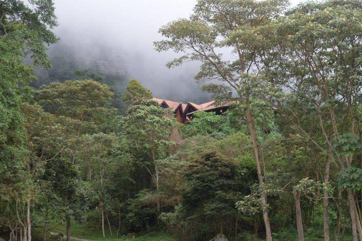 Refugio, Reserva chicaque, Colombia