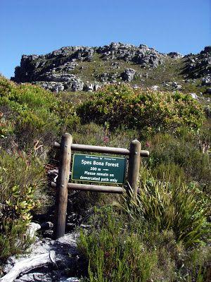 Walking the Cape: Spes Bona and Echo Valley, Kalk Bay