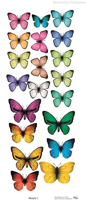 http://www.skarbnicapomyslow.pl/pl/p/AltairArt-Foggy-Dew-Motyle-1/3364