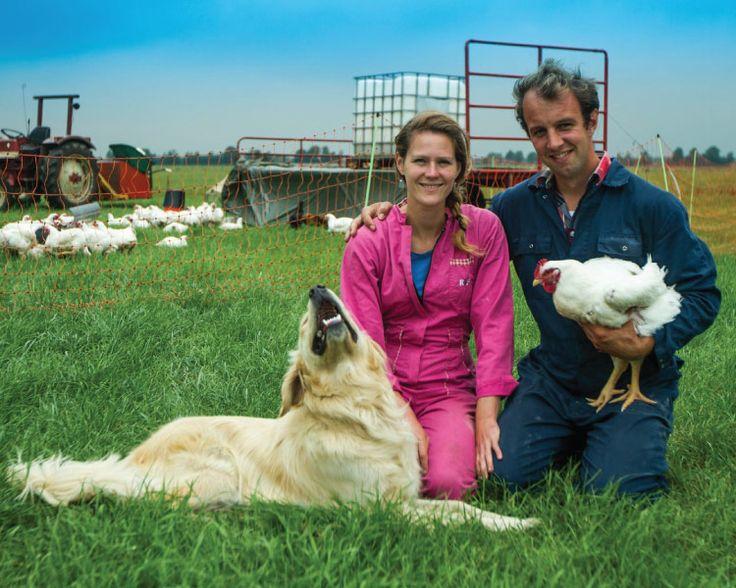 Boer Bart Kenmerken: Minimale co2 voetprint Duurzame ondernemer 121 Jersey-koeien 150 legkippen Twee varkens Twee Vlaamse Reuzen
