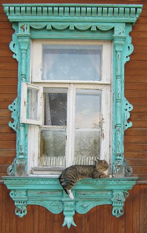 Turquoise window with cat