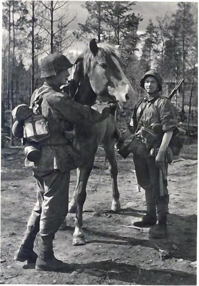 "Gebirgsjäger of the 6. SS ""Nord"" tending their pack horse."