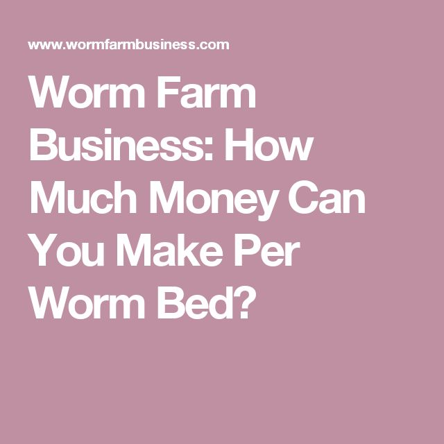 How Much Money Can You Make Per Worm Bed?