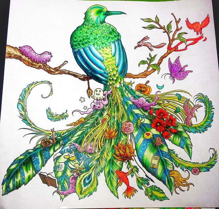 animorphia fågel målarböcker för vuxna