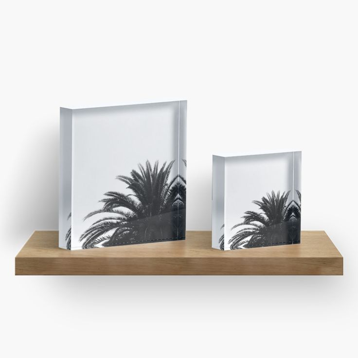 Palm Tree In BW Acrylic Blocks by ARTbyJWP from Redbubble #acrylicblock #walldeco #artprints #buyart #blackandwhite #palm #minimal --- Monochrome abstract composition of palm tree top leaves • Also buy this artwork on home decor, apparel, stickers, and more.