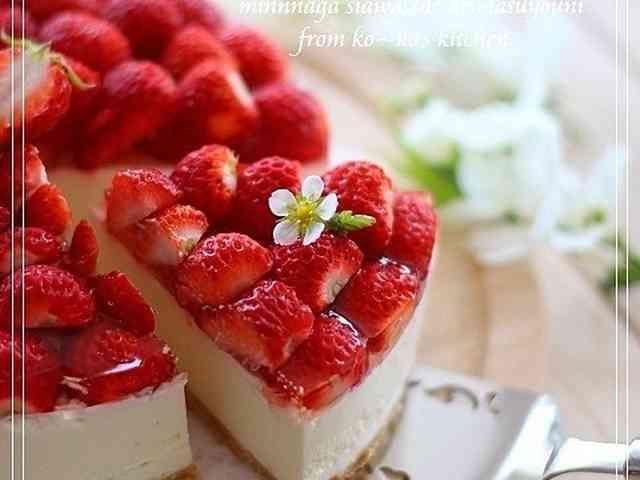 本格苺のレアチーズケーキの画像