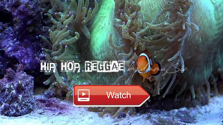 HIP HOP Reggae Instrumental Beats Yoo Man UP FULL HD Landscapes  Tubagusdin Music DINmuSic Hip Hop Rap Reggae Melodic Instrumentals Song by dinmuSic tubagusdin video by Mr Debron C