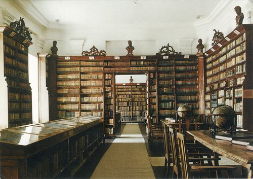 so many shelves: Biblioteques Libraries, Dream Bookshelves, Katie S Books, Awesome Library So, Infinite Books, Good Books, Library Ladder