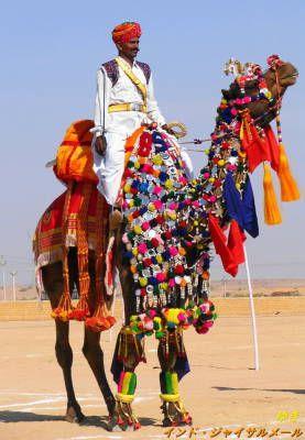 インドへ行ったら一度は乗りたいラクダ!インド 観光・旅行の見所!