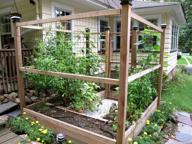 enclosed garden idea dog and chicken proof
