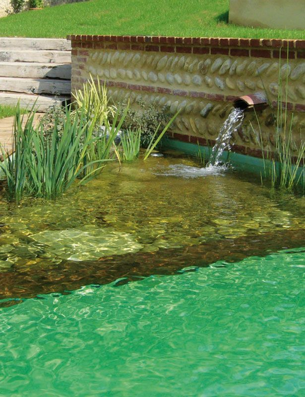 Swimming pool filtration doesnt have to involve chemicals, check out these natural swimming pools