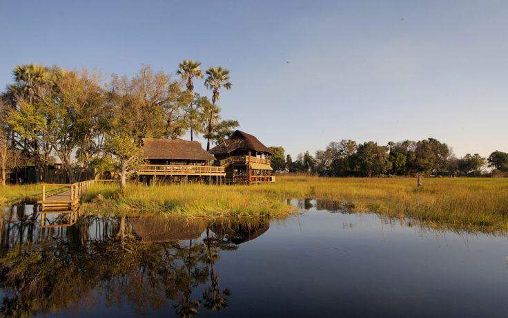 Chief's Island – Botswana's Serene Wildlife Sanctuary | #TravelDestination #Botswana #Africa | http://underonebotswanasky.com/camps/gunns-camp.php