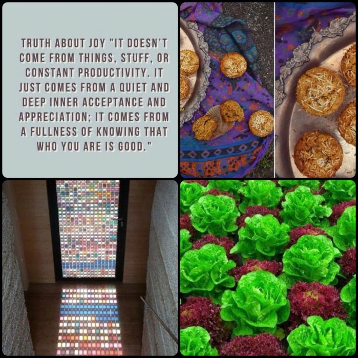 Fab Friday - stained glass door, fastest growing plants, the truth about joy, carrot & coconut muffins