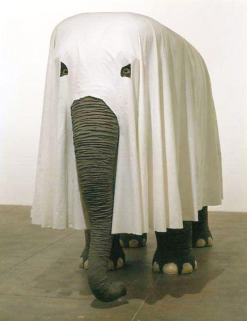 : Elephants, Happyhalloween, Maurizio Cattelan, Halloween Costumes, Ghosts, Rolls Tide, Design Blog, Animal, Happy Halloween
