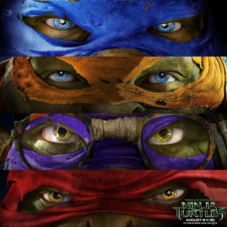 Teenage Mutant Ninja Turtle! Leonardo - Blue Michaelangelo - Orange Donatello - Purple Raphael - Red