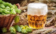 Bier brauen: So machen Sie sich Ihr eigenes Pils   Chefkoch.de Magazin
