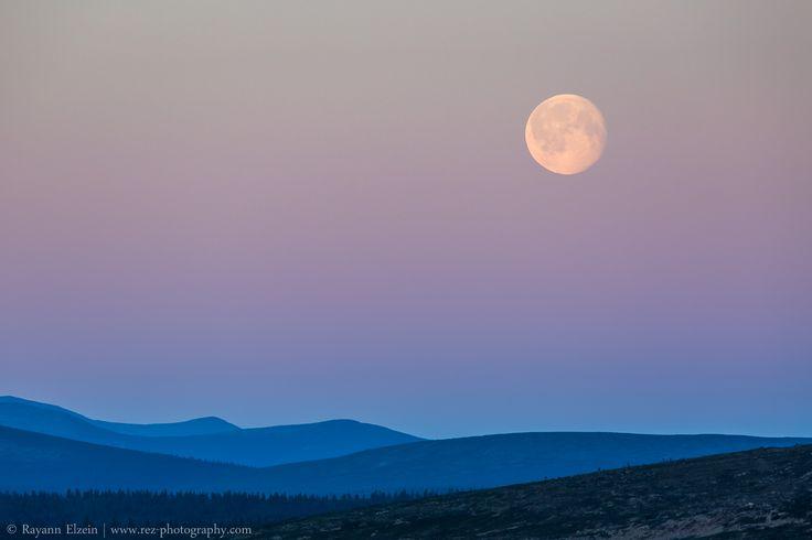 Lapland Midnight Sun - Moon. The top of Kaunispää fell near Saariselkä. Photo by Rayann Elzein.
