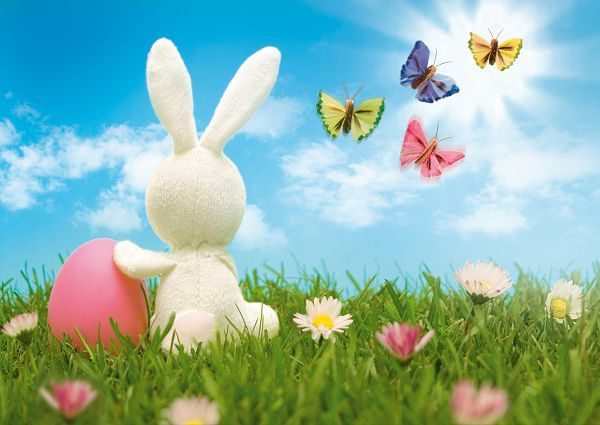 Allenjoy photography background 300CM*200CM(about 10ft*6.5ft) New arrival Rabbit photo studio Easter day zzj6