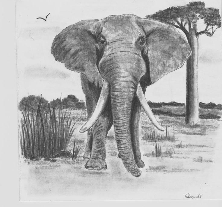 I Love Elephants by Hester Bondt