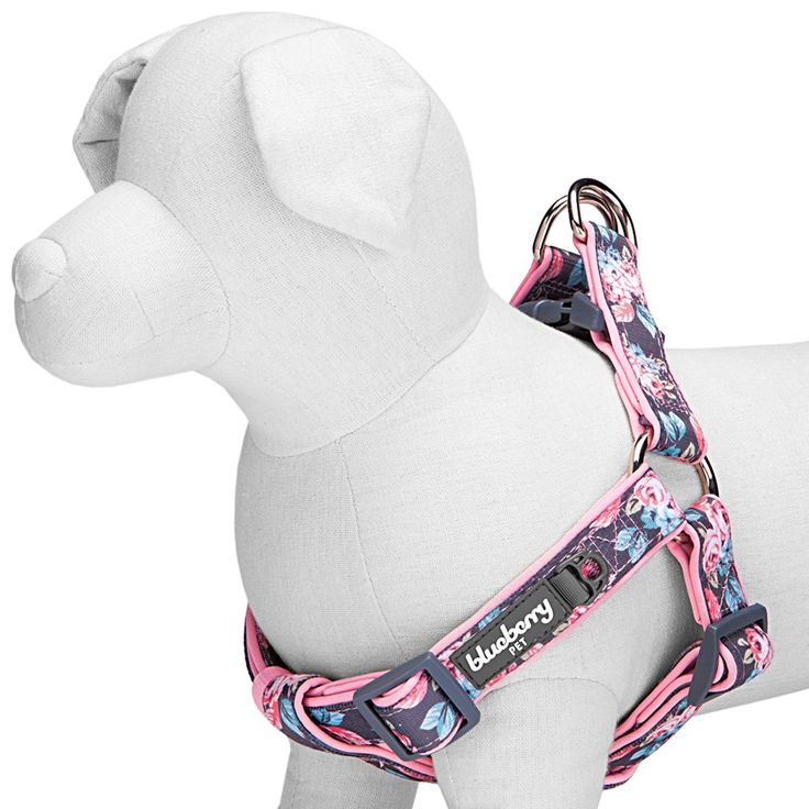 Summer Welcoming Rosy Prints Girly Neoprene Padded Ultra-Soft Dog Harness