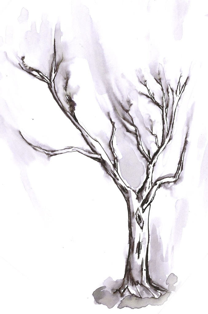 Tree illustration with ink - Malmö, Sweden - 2012