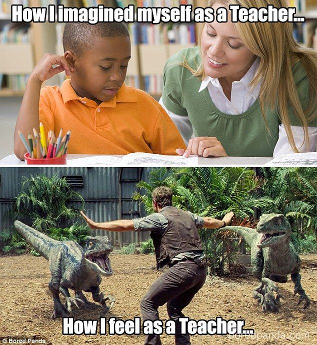 Teachers Share The Most Hilarious Moments Of Their Day To Day Lives Teacher Memes Funny Teaching Memes Teacher Humor
