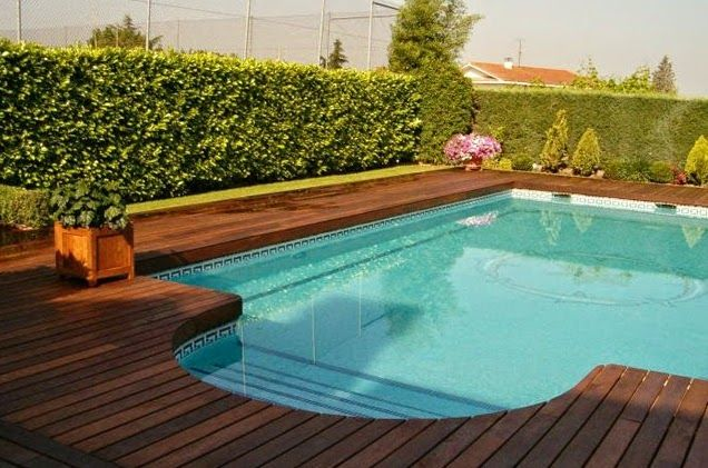 9 melhores imagens de piscina no pinterest piscina pesquisa google e reas de lazer - Agora piscina latina ...