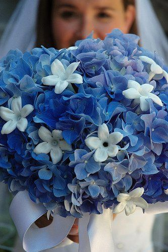 nice version of hydrangea with some kind of small white cute flower. white flower = stephanotis.