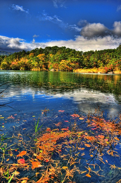 Fukushima - Goshikinuma (Five Colored Lakes)