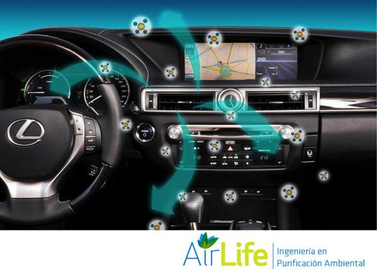 AIRLIFE te informa. El sistema de ductos de ventilación de un vehículo acumula una gran cantidad de contaminantes orgánicos, bacterias, virus y hongos, además de producir olores desagradables por el tabaco, mascotas, suciedad impregnada en los zapatos y restos de comida abandonada al interior de los automóviles. La solución para evitarlos es el uso del servicio de purificación de aire AIRLIFE. http://www.airlifeservice.com/