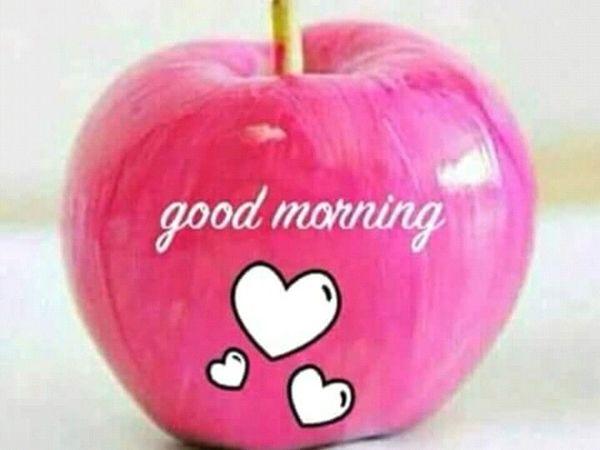 صور صباح الحب Good Morning Gif Images Good Morning Gif Good Morning Greetings