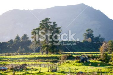 Rural Scene by Early Morning Royalty Free Stock Photo