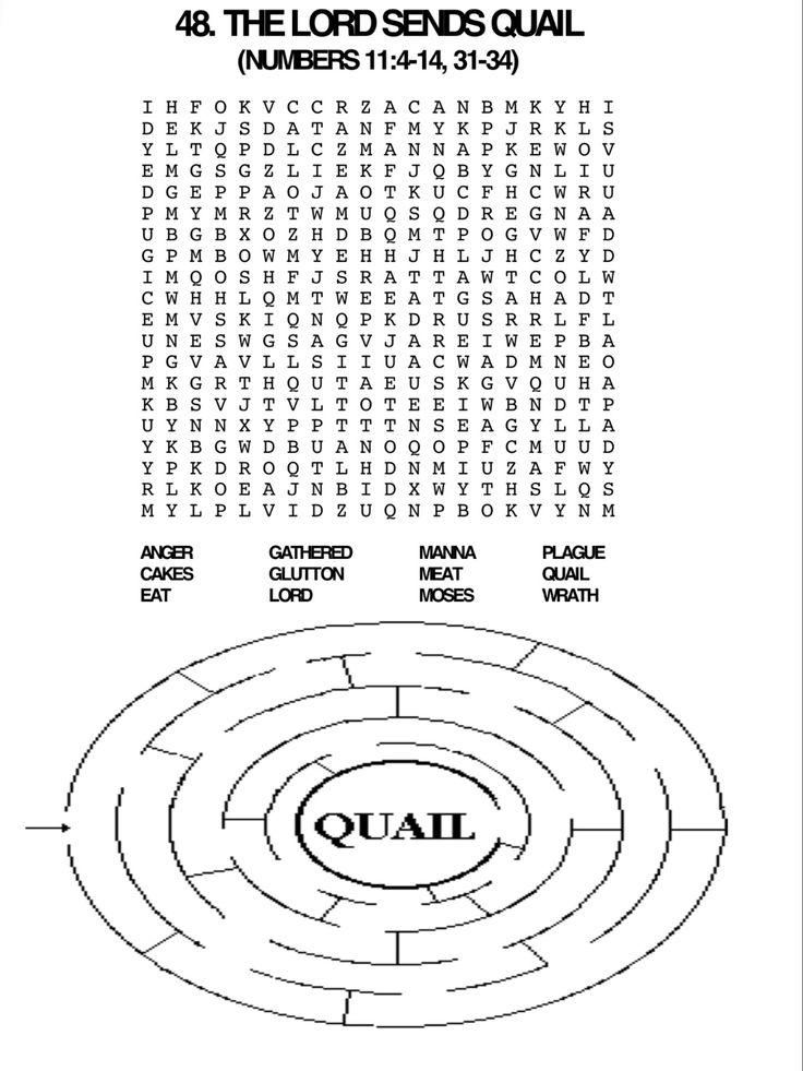Quail Word Search And Maze