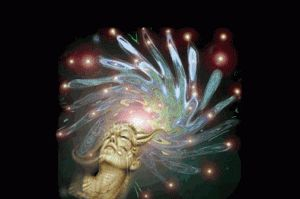 UN QUETE INDIVIDUELLE : Maître spirituel, guide éclairé, « pur des purs » mythique aux idées séduisantes de vérité : se détacher du fardeau de la possession et de l'ego, trouver la paix intérieure, bâtir une société où tous les hommes seraient libres et égaux… Il était une fois un homme. Sans nom. Sans visage non plus, car dans la confrérie d'Aum où il naît et grandit, tout le monde porte un masque, en signe d'unité et de fraternité.