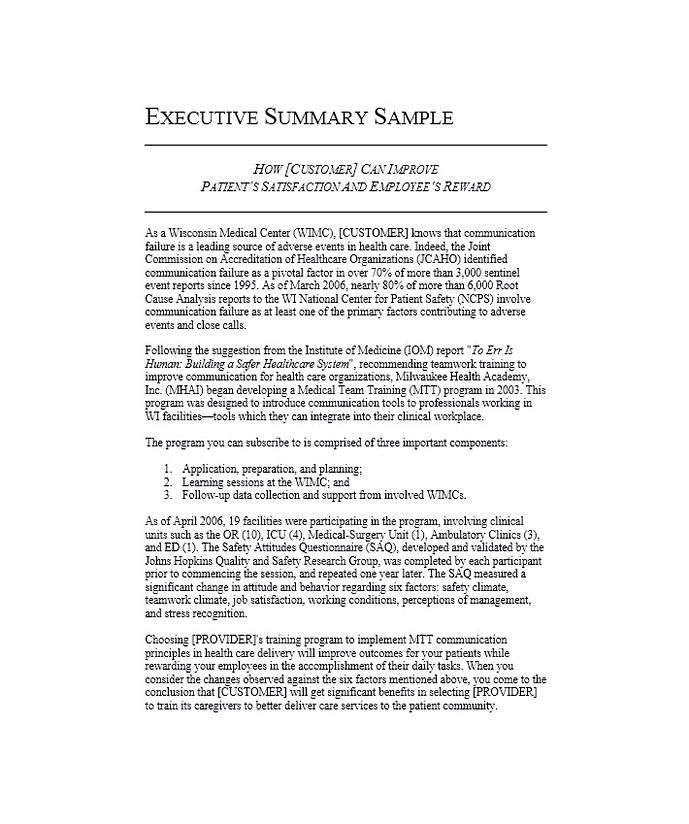 Executive Summary Example Executive Summary Example Executive