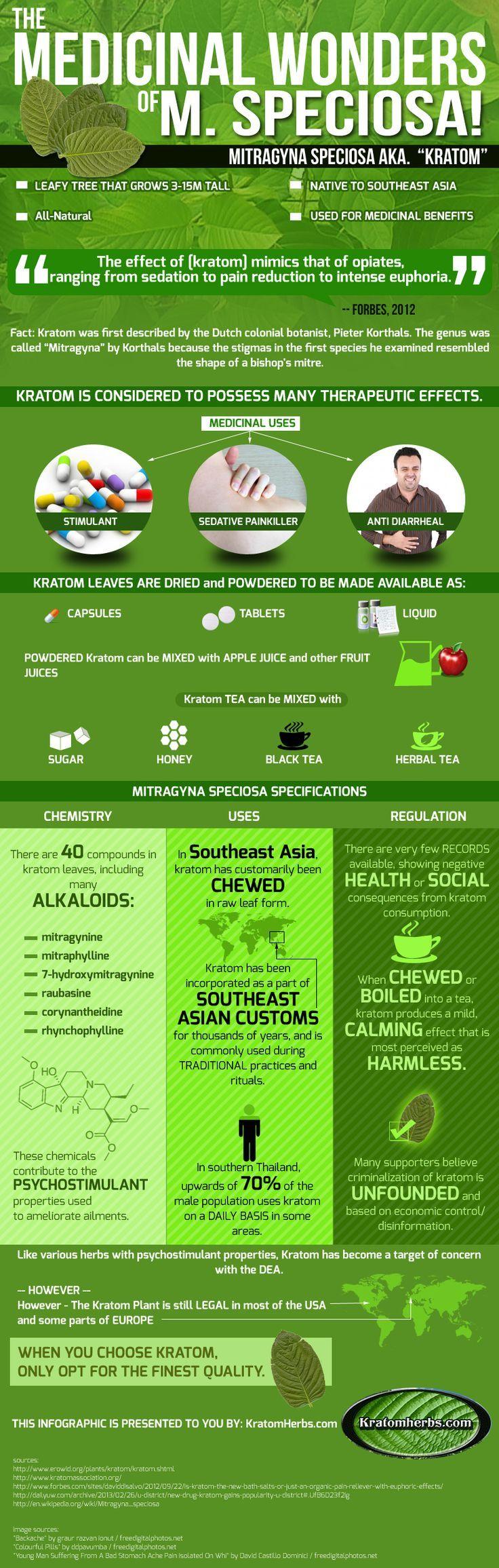 http://www.kratomherbs.com/what_is_kratom_buy_kratom_online_s/1837.htm The Medicinal Wonders of Mitragyna Speciosa Kratom [Infographic]